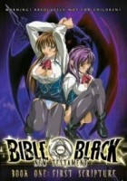 Bible Black New Testament 01